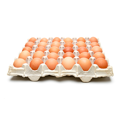 Local Organic Cage-Free Brown Eggs